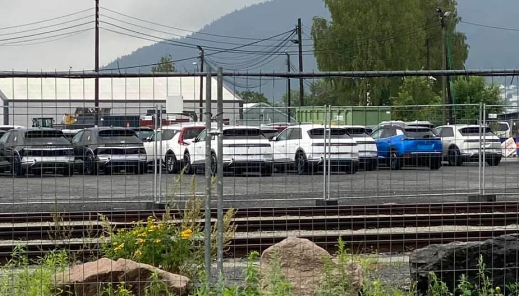 STÅR LENGE: Her står eksemplarer av Ioniq 5 – blant biler av andre merker – og venter på understellsbehandlingen i Drammen havn.
