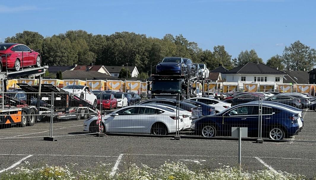 """<span class="""" font-weight-bold"""" data-lab-font_weight_desktop=""""font-weight-bold"""">STRØMMER PÅ:</span> Her står en rekke nye Teslaer og venter på å bli kjørt ut til kundene. De to bilene i forgrunnen, viser forskjellen på en Model 3 (hvit) og Model Y (blå)."""